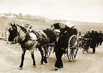 6 Juin 1944 .... 5589_exode_cheval_voiture2_vign%5B1%5D
